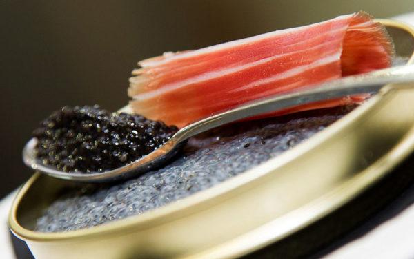fisan.es : alta gastronomia